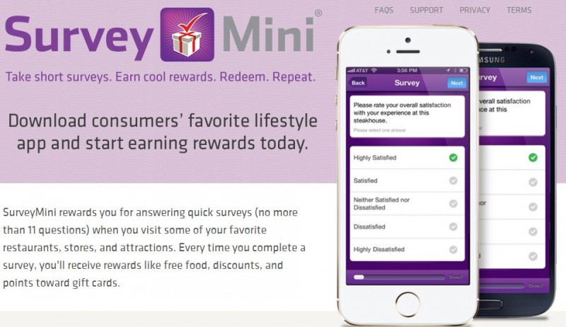 Survey Mini Paid Surveys App